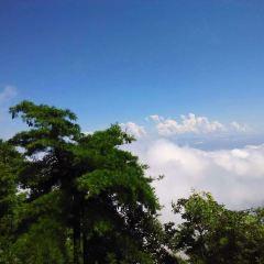 天台山森林公園用戶圖片