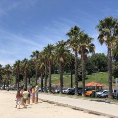 Eastern Beach Reserve User Photo