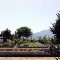 Jardin Suizo User Photo