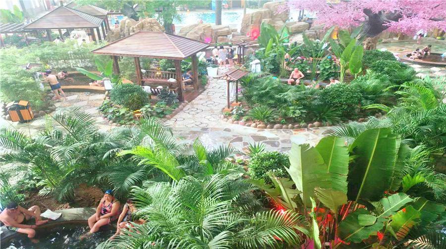 浴龍谷溫泉度假村