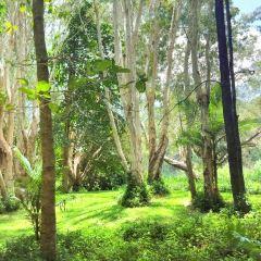Jerrabomberra Wetland User Photo
