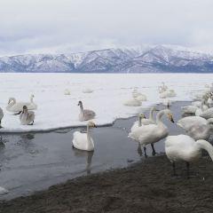 Sunayu Lake Kussharo User Photo