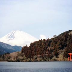 元箱根石仏群のユーザー投稿写真