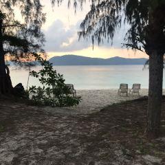 Coral Island User Photo