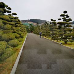 UN기념공원 여행 사진