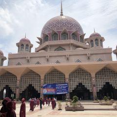粉紅清真寺用戶圖片
