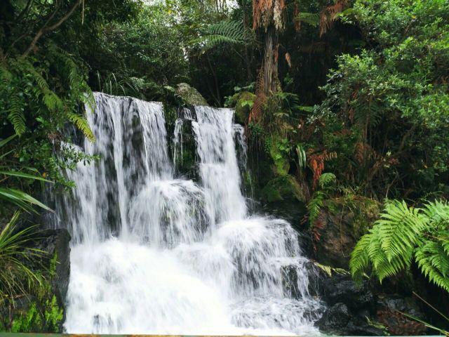 Rainbow Springs Nature Park