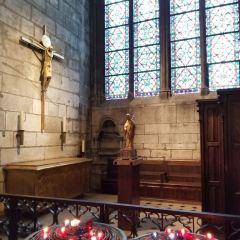Cathédrale Notre-Dame de Paris User Photo
