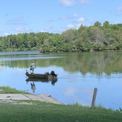 Homer Lake Forest Preserve User Photo