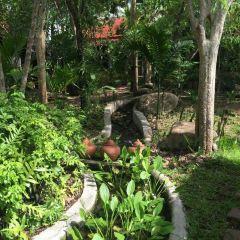 Changwat Suratthan/Suratthani Province User Photo