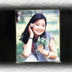 Teresa Teng Memorial park User Photo