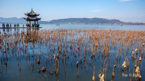 Yi Park