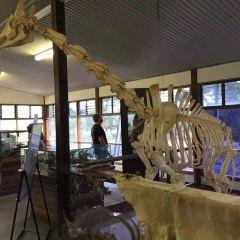 莫納托野生動物園用戶圖片