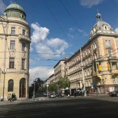 Vaci Street User Photo