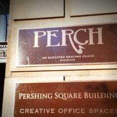 Perch User Photo