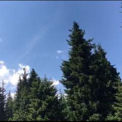 南山森林公園用戶圖片