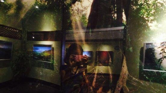 海南雨林展覽館