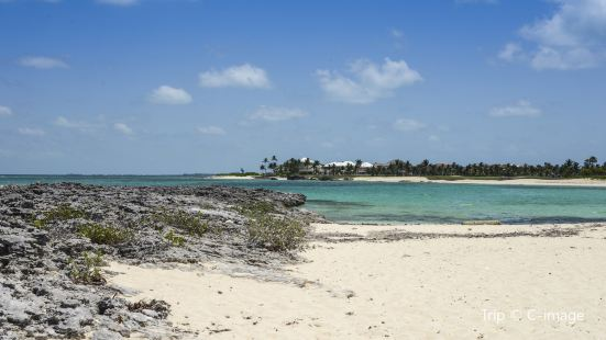 Cabbage Beach