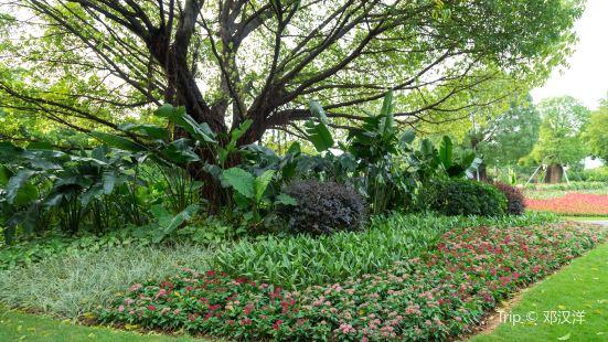 花卉觀賞區