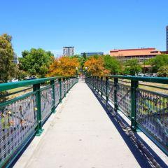 多倫斯河帶狀公園小徑用戶圖片