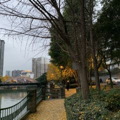 Qixiayuan Park User Photo