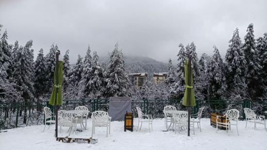 冬季的七里坪度假区异常安静,漫步在冰雪世界里景色怡人,主干道