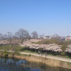 長堤公園用戶圖片