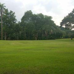 咖啡山森林保護區用戶圖片