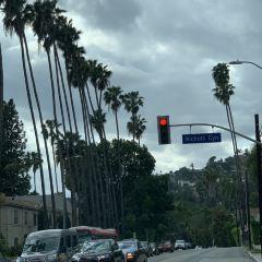 Beverly Hills User Photo