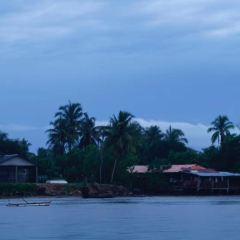 孟河紅樹林用戶圖片