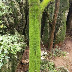 江南公園用戶圖片