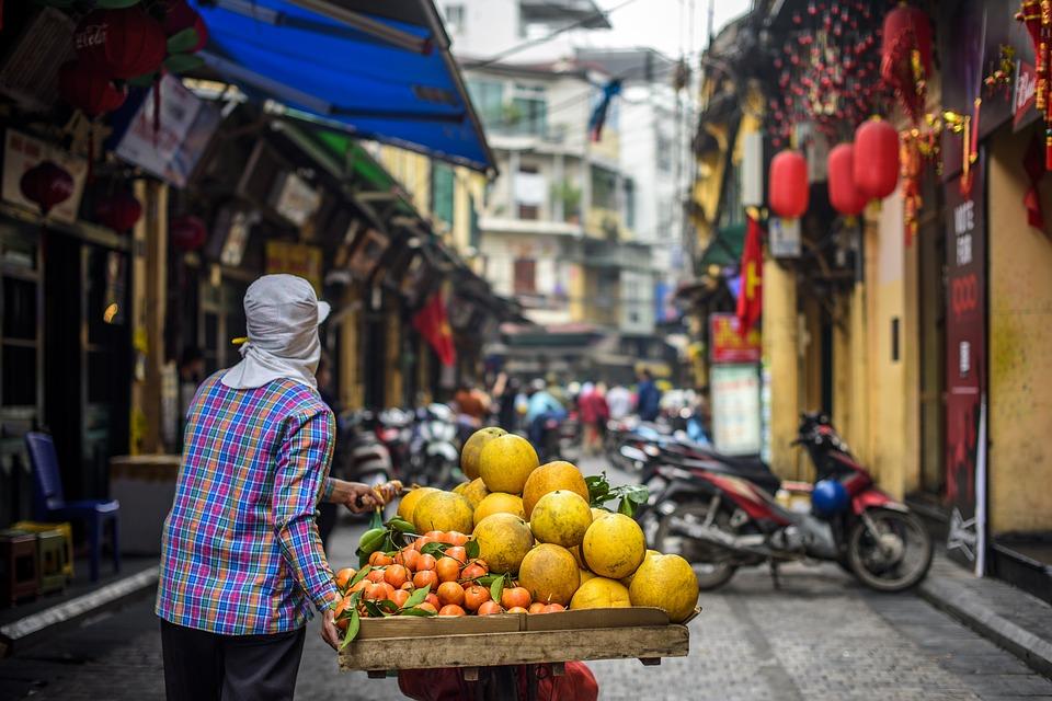 【越南簽證】越南旅遊入境攻略(附最新 e-Visa 申請方法) 一眼看清!