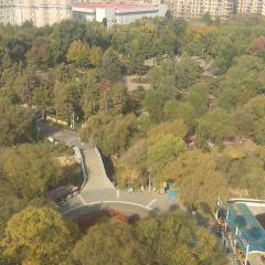 人民公園用戶圖片