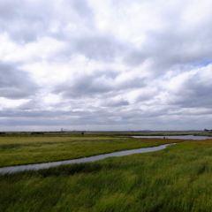 얼카습지 자연보호구역 여행 사진