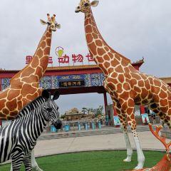 Binhe Yesheng Dongwu World User Photo
