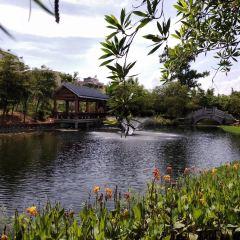 Dengyanda Memorial Park User Photo