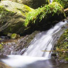 雙龍生態旅遊度假區用戶圖片