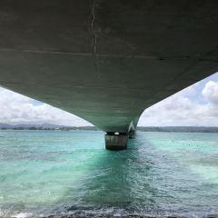 古宇利大橋のユーザー投稿写真
