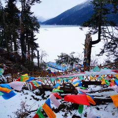 措木及日湖用戶圖片