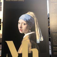 Mauritshuis Museum User Photo