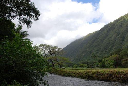 와이피오 계곡