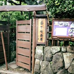 圓覺寺張用戶圖片
