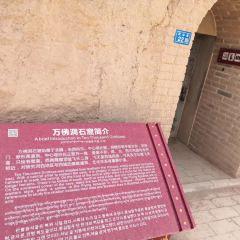 Wenshu Mountain Grottoes User Photo