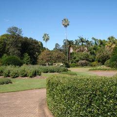 브리즈번 식물원 여행 사진