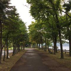 有珠山噴火紀念公園用戶圖片