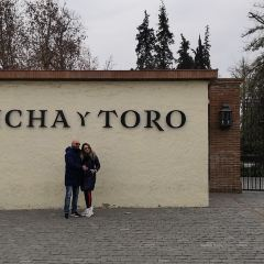 Concha y Toro User Photo