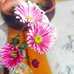 雲·醉美雲南菜館(餐桌上的小大理)用戶圖片