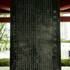 Lingwu Xihu Park User Photo