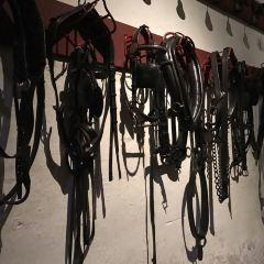 요크셔 박물관 여행 사진