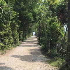 皮利角國家公園用戶圖片